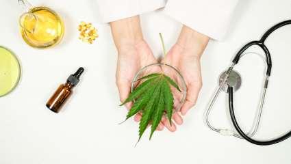 Effets santé cannabis thérapeutique