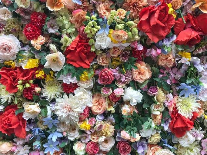 Pouvoir des fleurs