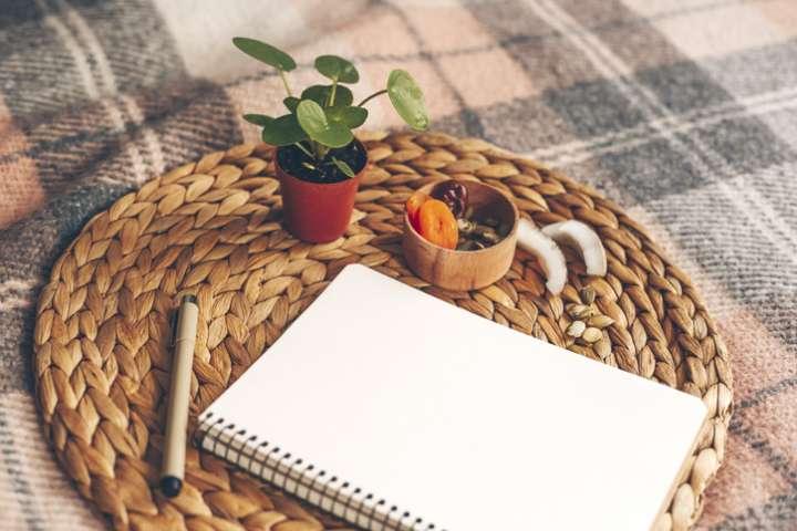 3 plantes feng shui à mettre chez soi