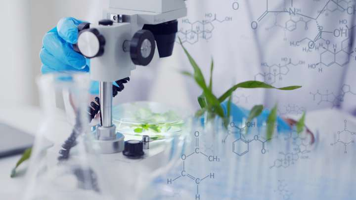 W17P47  synergie plantes alphanosos traitement covid