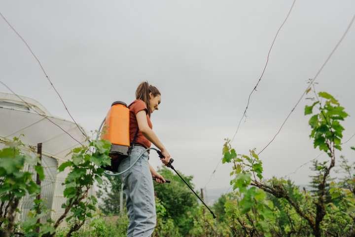 Gembloux Agro-Bio Tech espèrent commercialiser 3 pesticides biologiques