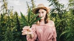 Cannabis thérapeutique : panacée du futur ?