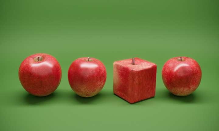 Technique pour débusquer OGM frauduleux