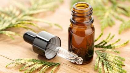 Cyprès huile essentielles