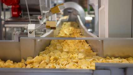 Chips industrielles