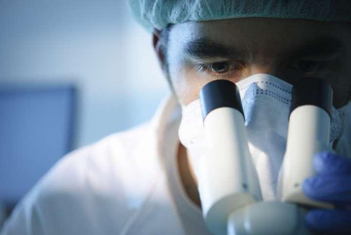 observation scientifique