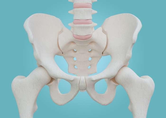 Les fractures de la hanche