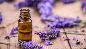 Contrer l'herpès labial avec les huiles essentielles