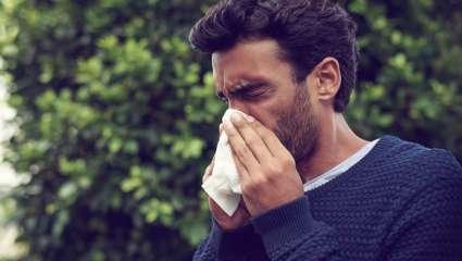 Les huiles essentielles pour combattre les allergies