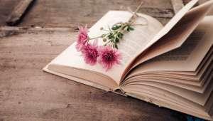 Florence Burgat « La vie végétale fascine, car elle renaît sans cesse et ne connaît pas le déclin »