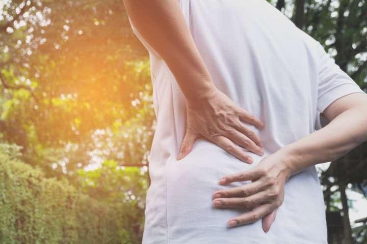 Bugle rampante contre le mal de dos