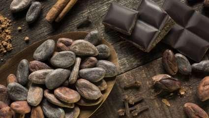 Riches en nutriments précieux, anti-oxydantes, les fèves de cacao sont une source de propriétés bénéfiques.