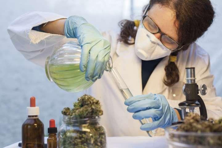 préparation homéopathique de Marijuana