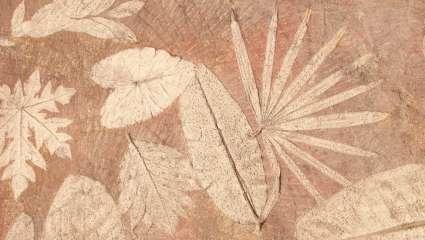 Les fleurs apparues avant les dinosaures