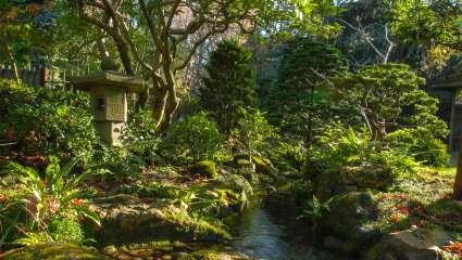 Jardins Albert-Kahn