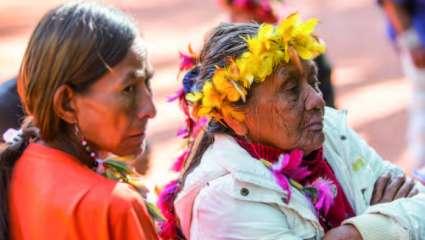 les Indiens Guarani
