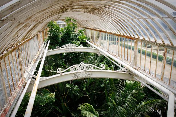 serre-kew-gardens