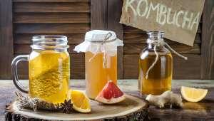 Le kombucha, une boisson fermentée