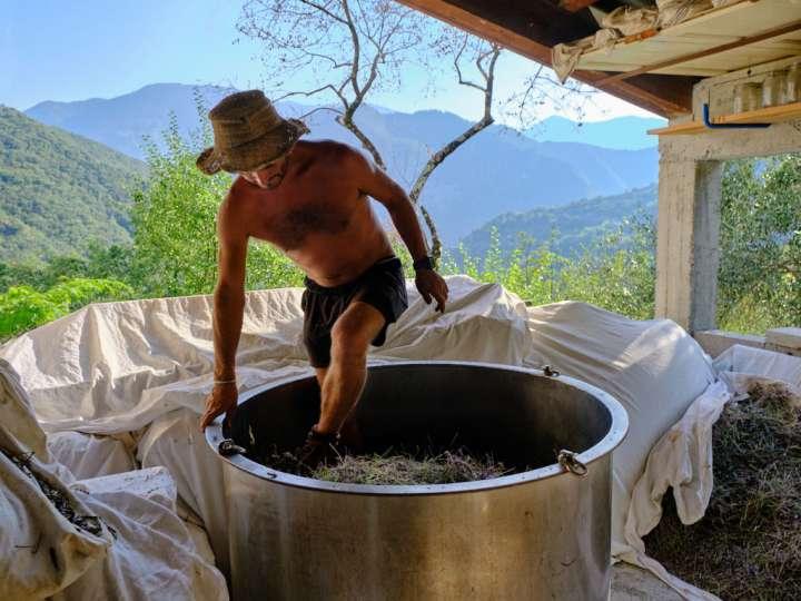 Christophe Courteau pratique la distillation lente pour préserver l'intégrité des essences des plantes