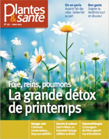 Plantes & Santé n°177 - Numérique