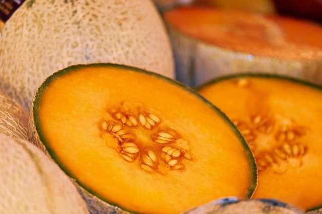 Melon - Des vitamines pour l'été