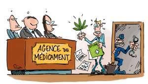 Dr FranckGigon : « Légaliser le chanvre serait une véritable avancée thérapeutique »