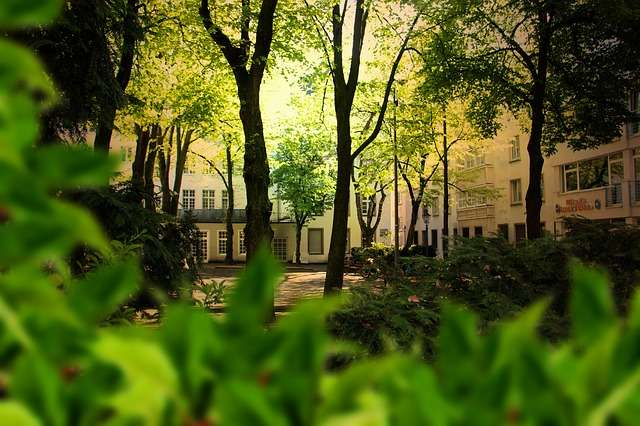 La biodiversité urbaine