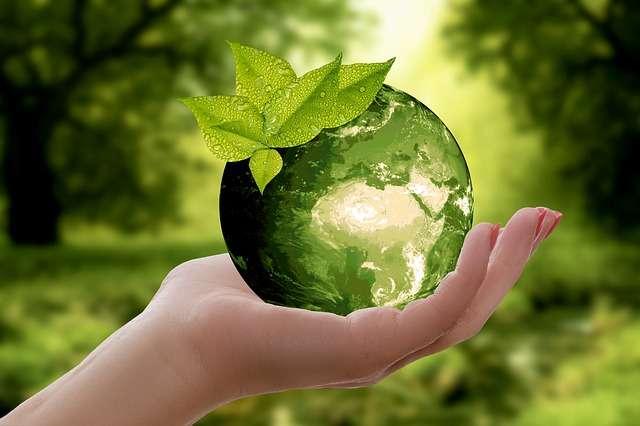 écologie