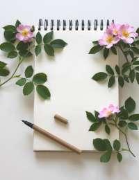 Livres : Plantes médicinales caribéennes, Secrets et remèdes