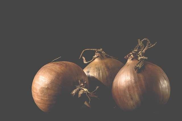 L'oignon, une plante riche en antioxydants
