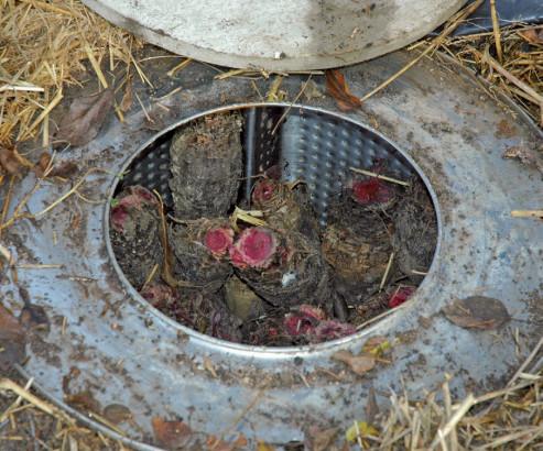 Tambour de machine à laver utilisé comme silo