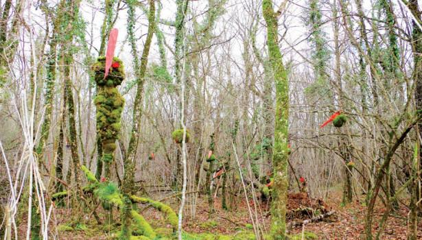 Sculptures végétales de la forêt d'Argentenay