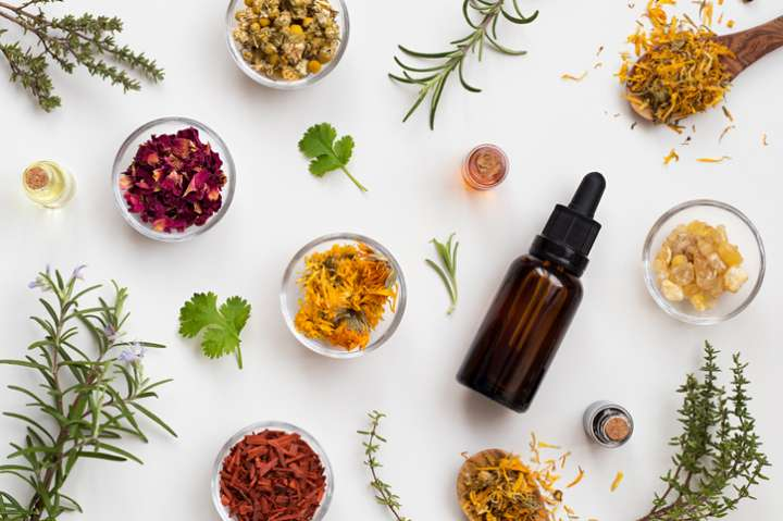 Plantes efficaces arthrose arthrite
