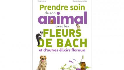 Prendre soin de son animal avec les fleurs de Bach