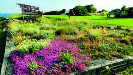 Le Jardin botanique Paul Jovet