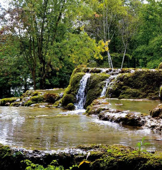 Le jardin des fontaines p trifiantes plantes et sant - Le jardin des fontaines petrifiantes ...