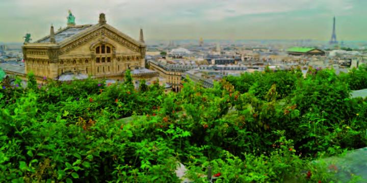 Le toit végétalisé des Galeries Lafayette