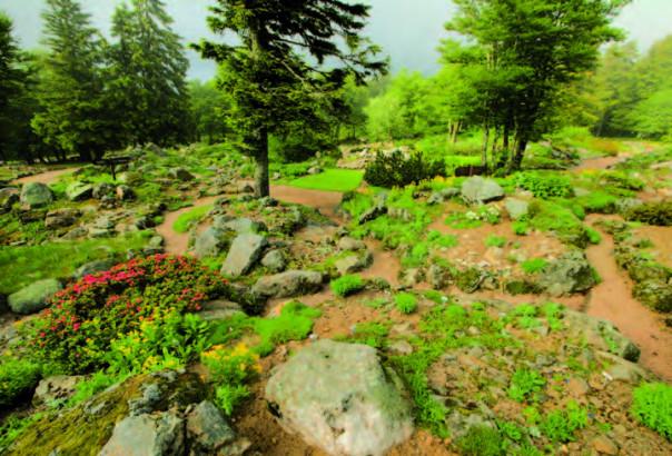 Le jardin du Haut Chitelet