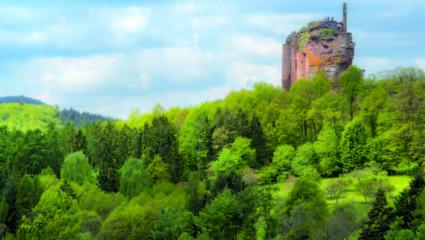 Forêt Fleckenstein
