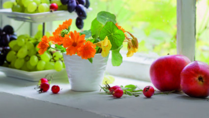 plats-fleurs