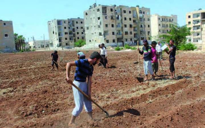 Syrie-agriculteurs