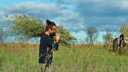 L'herbier des Garrigues