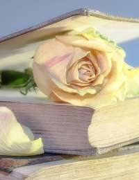 Livres : Botanical Expertise, Zéro gluten et Sauver la planète