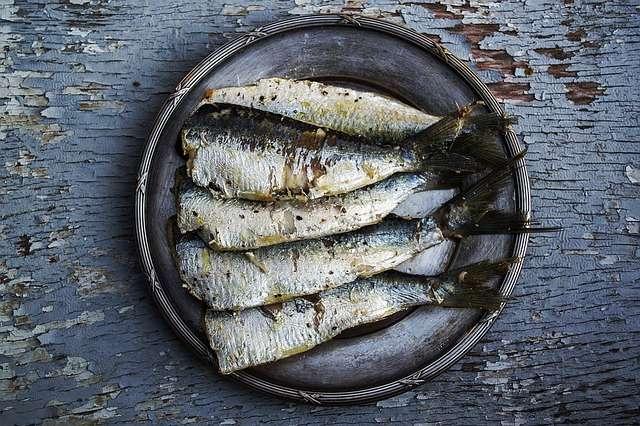 poissons oméga 3