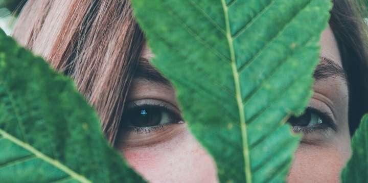 Entretenir et régénérer la peau du visage