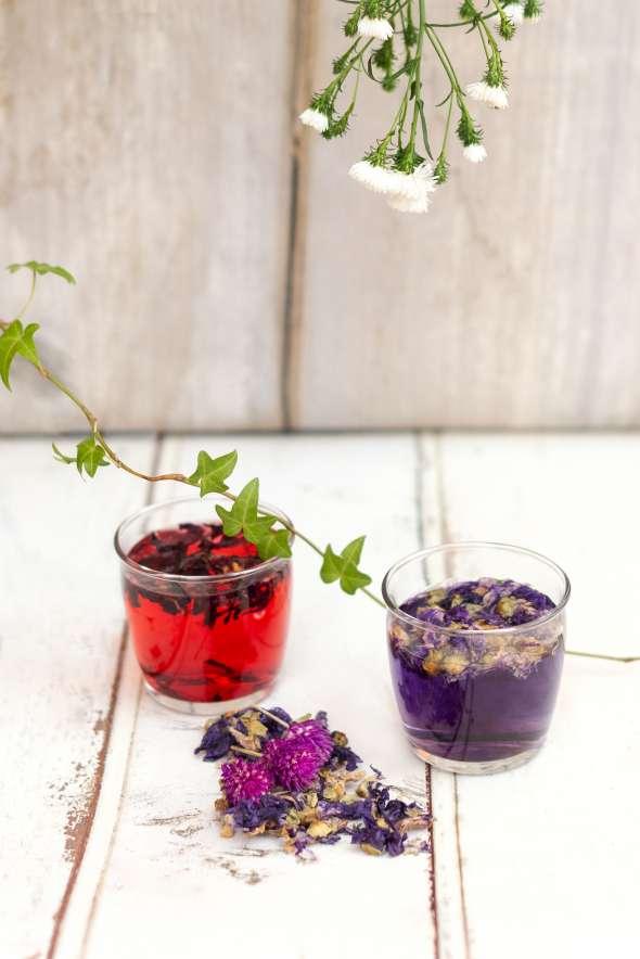 tisanes froides à l'hibiscus