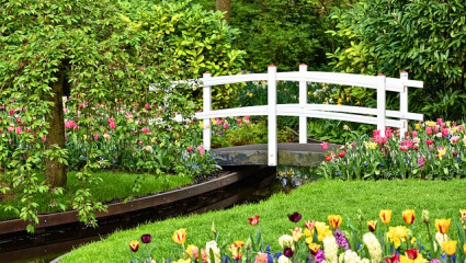 Eco-jardinage